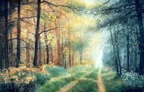 水彩画画光照树林分享展示