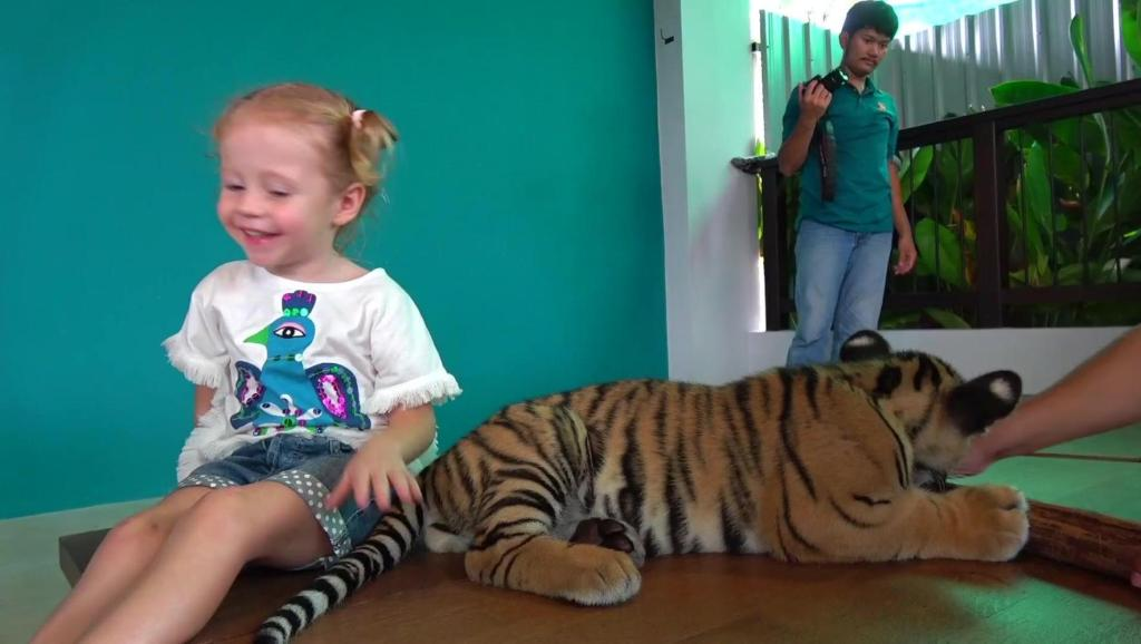 太厉害了,小朋友和小老虎一起玩耍!