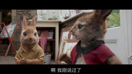 【口袋电影】比得兔小丑女配音弗洛普西