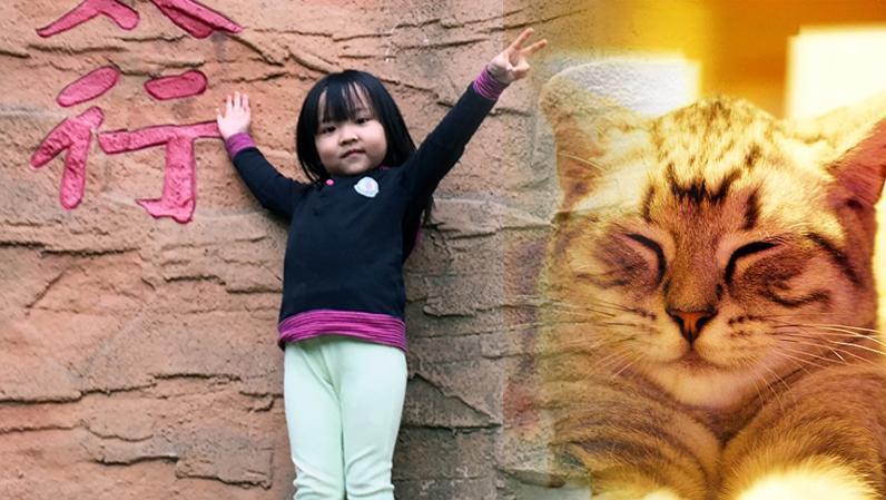 【六弦无限】一只懒猫 | 演唱: 伊伊