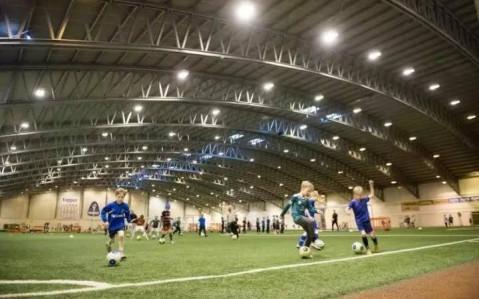 冰岛足球队: 维京人的战吼, 大西洋的低语