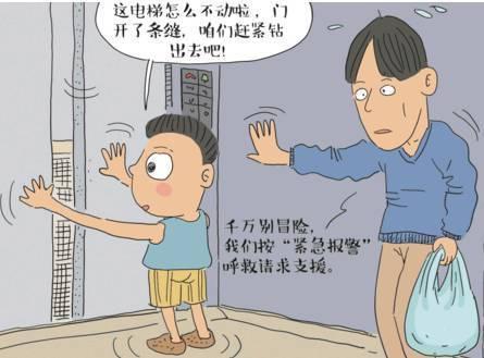小孩身体结构画