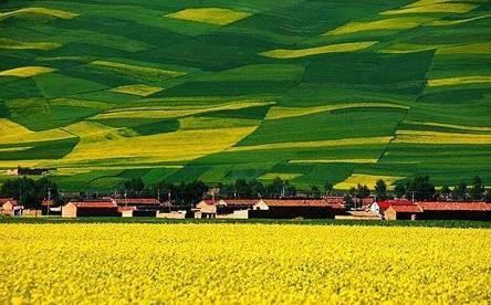 可乘坐西宁火车站青海湖旅游大巴 门票价钱:免费 交通:可搭乘前往乌兰