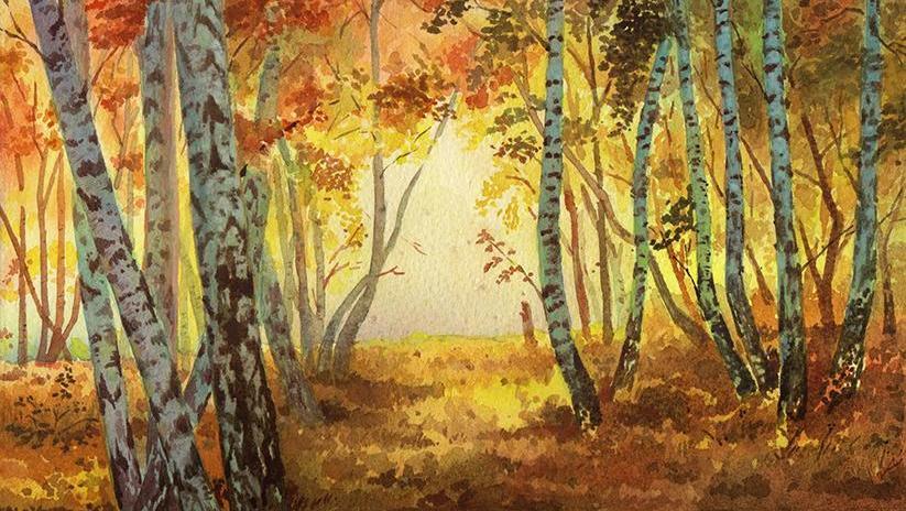风景速写教程写生素描静物书法 打开 逆光森林 水彩风景 预览版 手绘