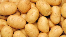土豆这样吃,降血压、降血脂,还能软化血管不硬化,比芹菜还有效!