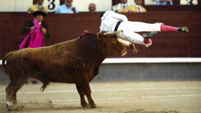 西班牙斗牛士失误被牛顶倒,就再也没能站起来!
