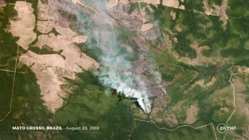 马克龙宣布G7砸钱助扑灭亚马逊雨林大火 投2千万欧元 外媒: