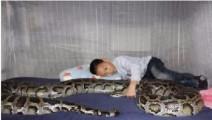 女儿偷养小蛇,多年后小蛇变回蛇王回来报恩,感动!