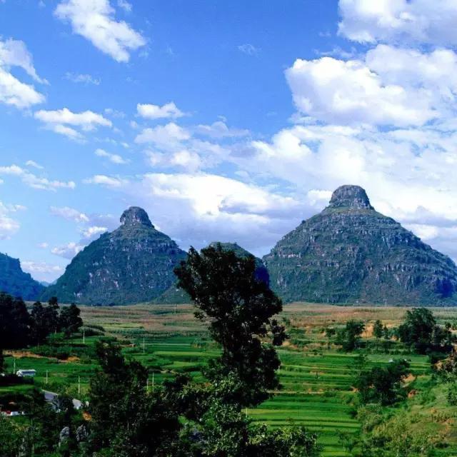 百里杜鹃风景区位于贵州省毕节市大方,黔西县交界处,因整个天然杜鹃