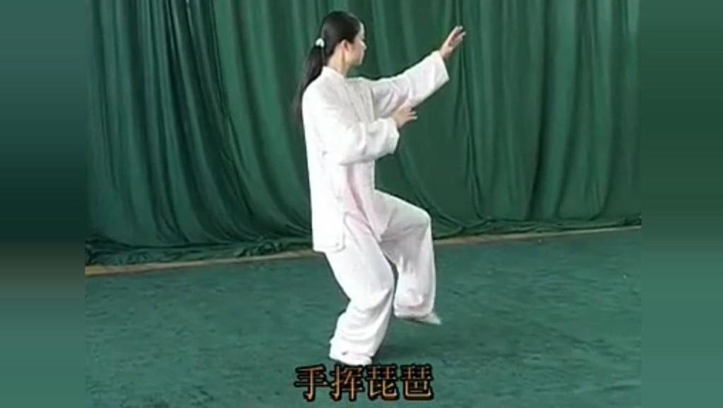 健康养生: 24式太极拳视频第一节