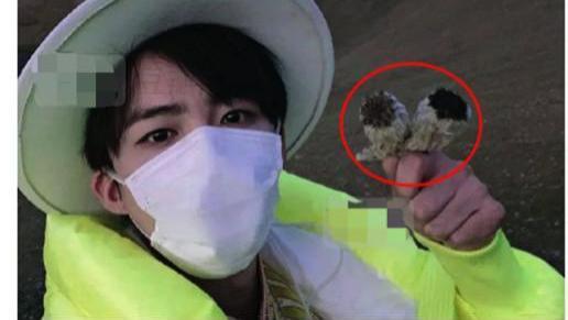 刘宇宁采摘珍稀植物称道具,遭到专家打脸,节目录制底线在哪里?