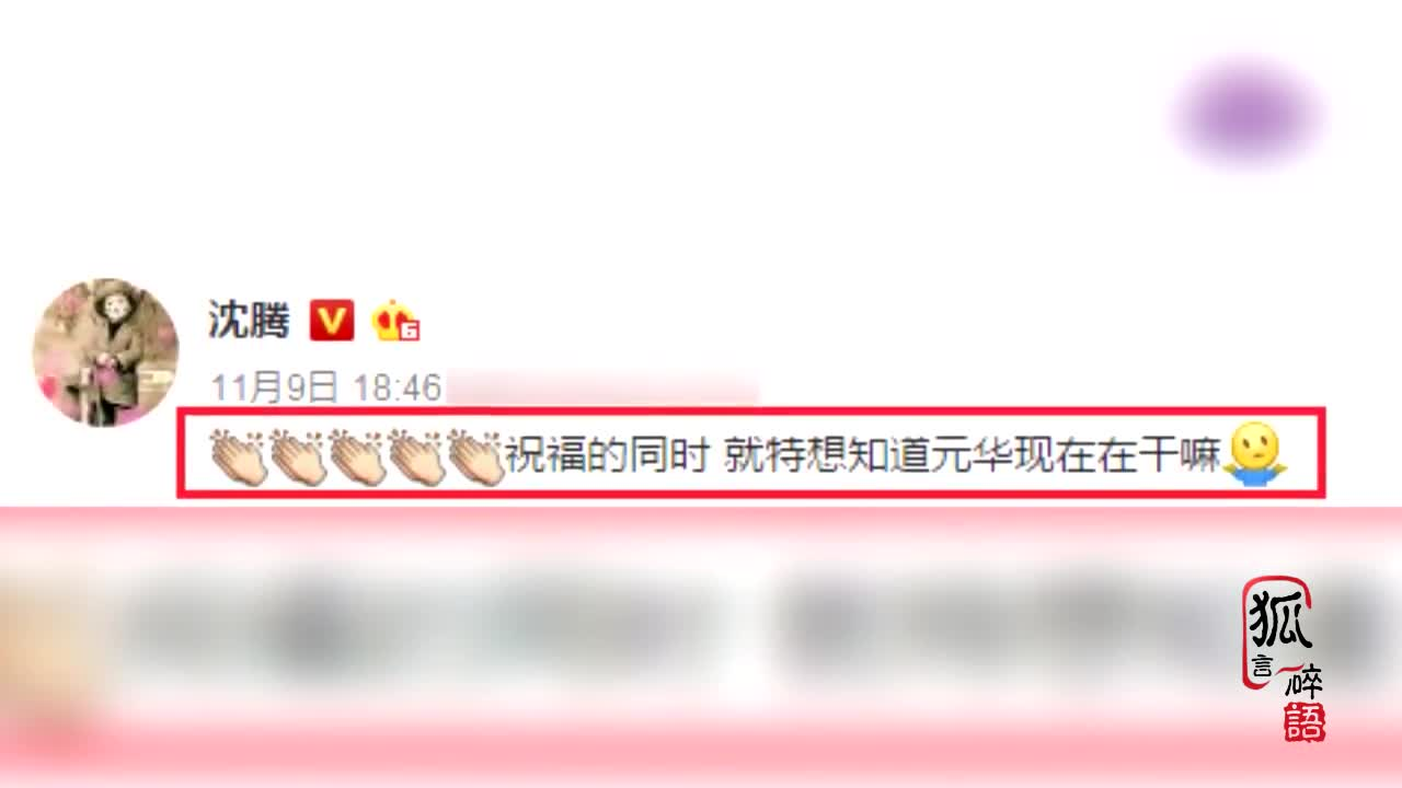 沉腾祝福王智结婚 网友: 找马冬梅去