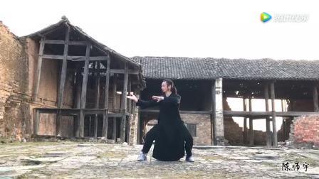 梦回残垣断壁回龙, 梦回千年武当山, 陈师宇梦回太和拳, 美轮美奂