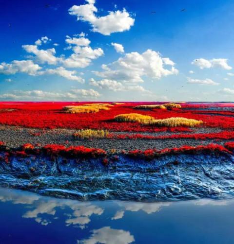 红海滩风景区是国家4a级景区,位于辽宁省盘锦市大洼县赵圈河乡境内.
