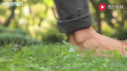 雅馨绣坊棉鞋编织视频第51集 美人兔拖鞋的织法