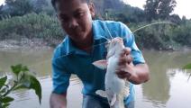 钓鱼: 刚下竿不久就中鱼了,拉起来后鱼还在咕咕咕咕的叫