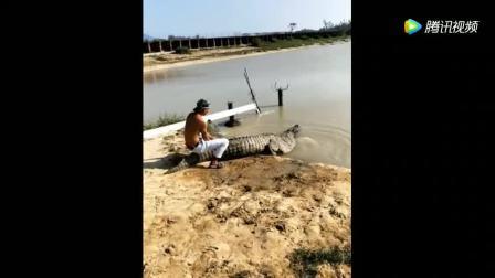 鳄鱼: 小哥你别走呀, 跟我到水里去玩一会呗