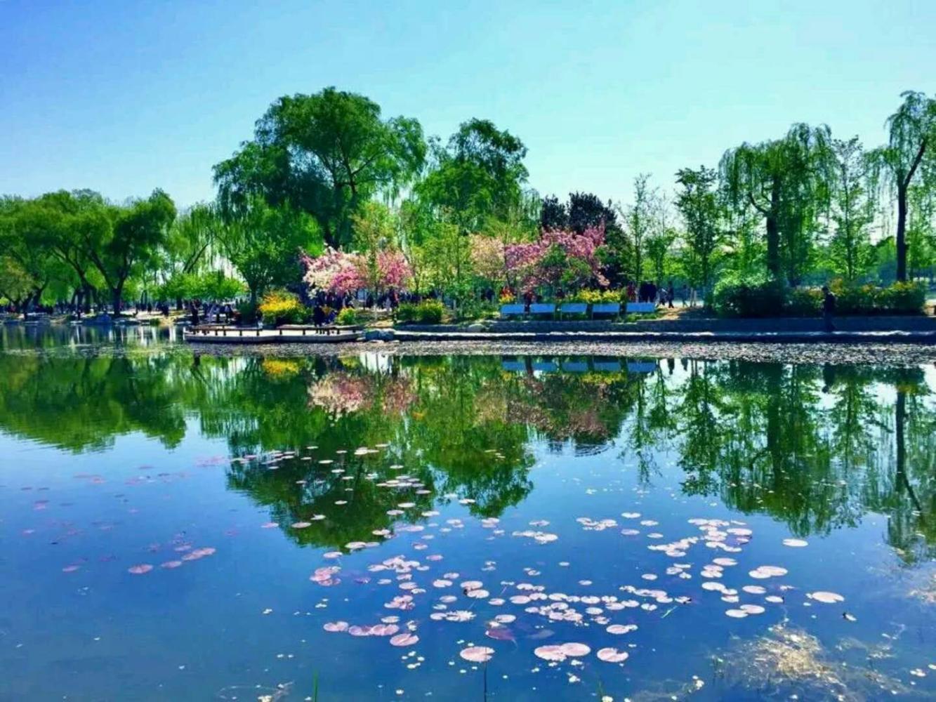 豪比世外桃源的風景, 北京玉淵潭公園的風采, 你是否去旅游過?