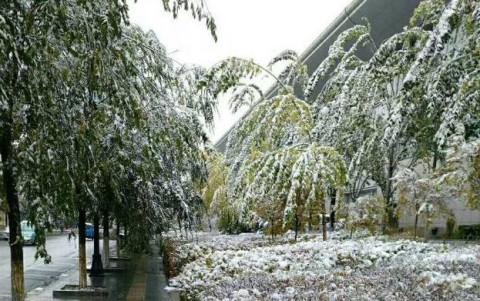 海西州德令哈市迎来的一场雪景刷爆朋友圈!