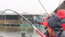 这条大鱼200多斤,这钓鱼的场面太混乱了!