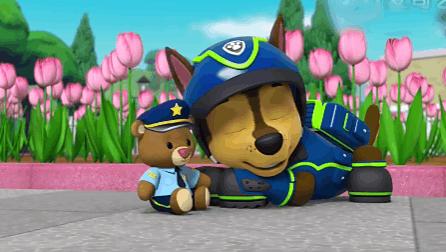 路马的小熊警官 汪汪队立大功 玩具 03集 小猪佩奇动画 中文 高清