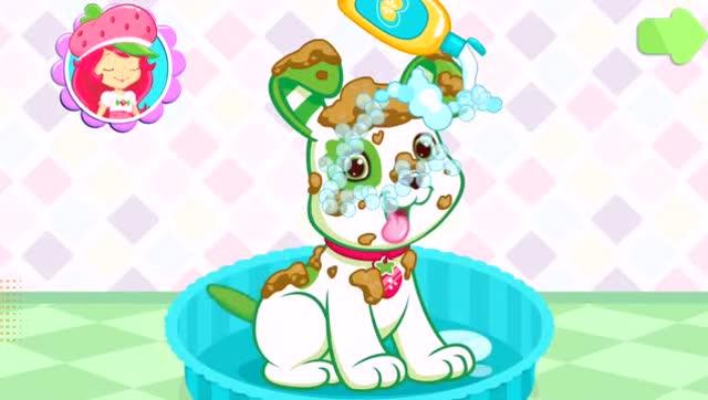 草莓小女孩 宠物乐园 洗澡 吃饼干 玩飞盘