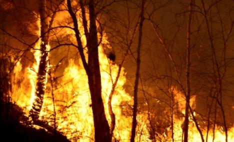 内蒙古大兴安岭火灾火场面积约1万公顷 嫌犯被拘