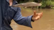 贝爷的钓鱼技术没得说,在充满河马和鳄鱼的河边钓鱼