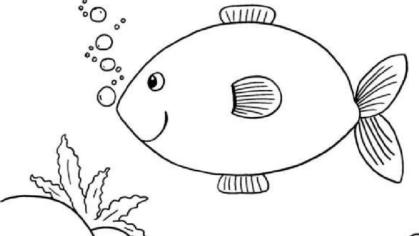 鱼简笔画图片 儿童小鱼简笔画大全