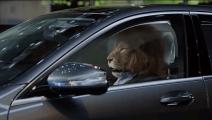 奔驰S600的这段广告创意,估计杜蕾斯看了都惭愧,真是够霸气