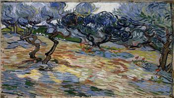 美博物馆宣布在梵高杰作《橄榄树》颜料中发现真正的蚱蜢
