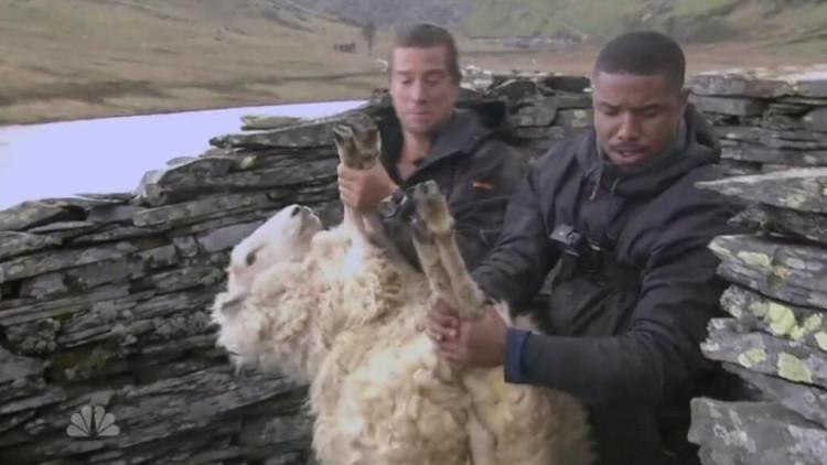 贝爷来到神奇的地方,不能吃绵羊,只好强行抱绵羊睡觉取暖!