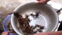 田里捉来100只螃蟹,农村大姐用祖传秘方烹饪出一道美食