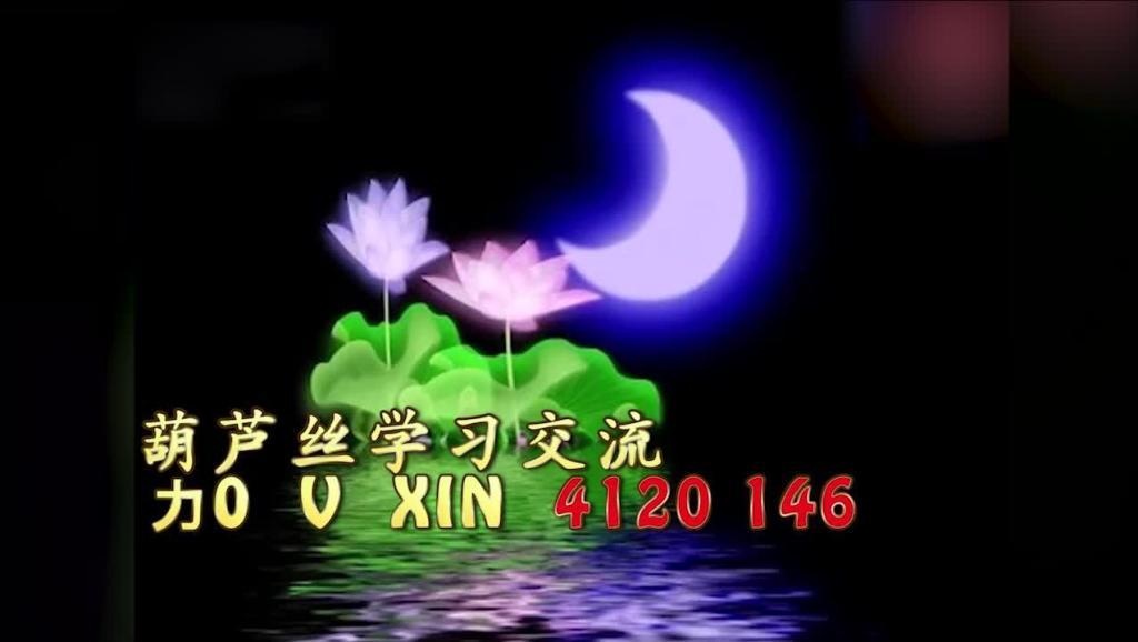 葫芦丝名曲教学3