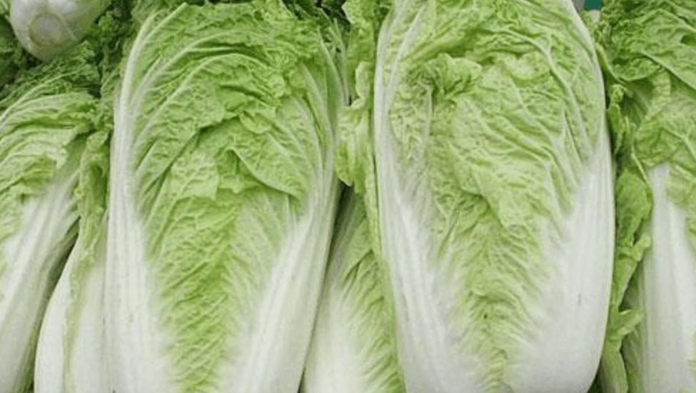 冬季4大养生蔬菜,医生一到冬季就不离口,强身健体要多吃!