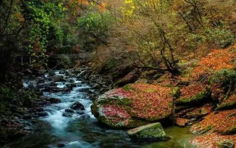 距县城70公里天书峡景区位于千家坪国家森林公园山美,水美曾有诗人