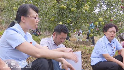 袁荃青岛电视台