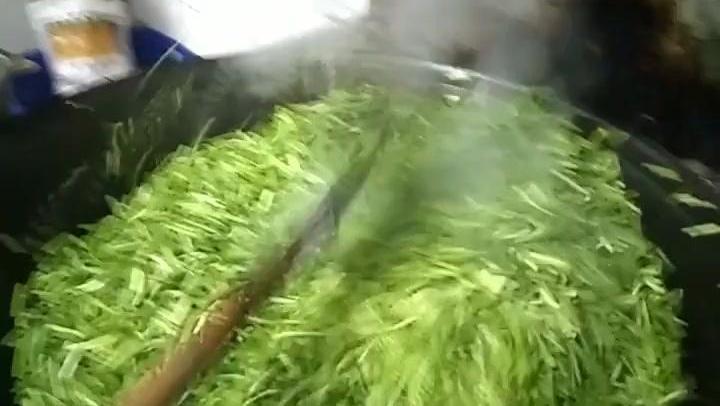 告诉你们什么叫炒蒜苔
