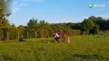 美国女孩和马交朋友, 称自己能和小马对话, 很神奇