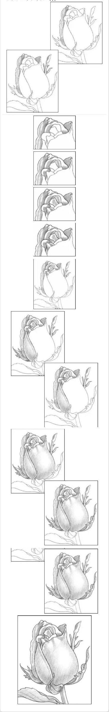 简单教程, 如何快速用铅笔画一朵玫瑰花