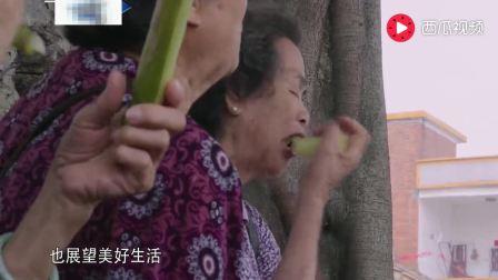 舌尖上中国: 顺德烧猪为啥皮脆肉嫩? 原来藏着小秘密, 学学吧