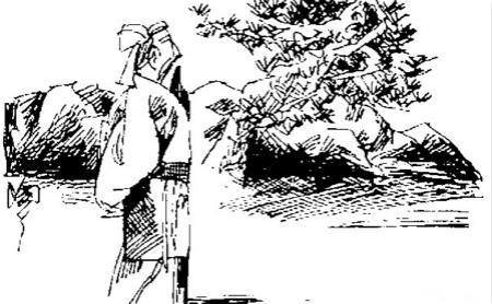 干枯树木手绘线稿