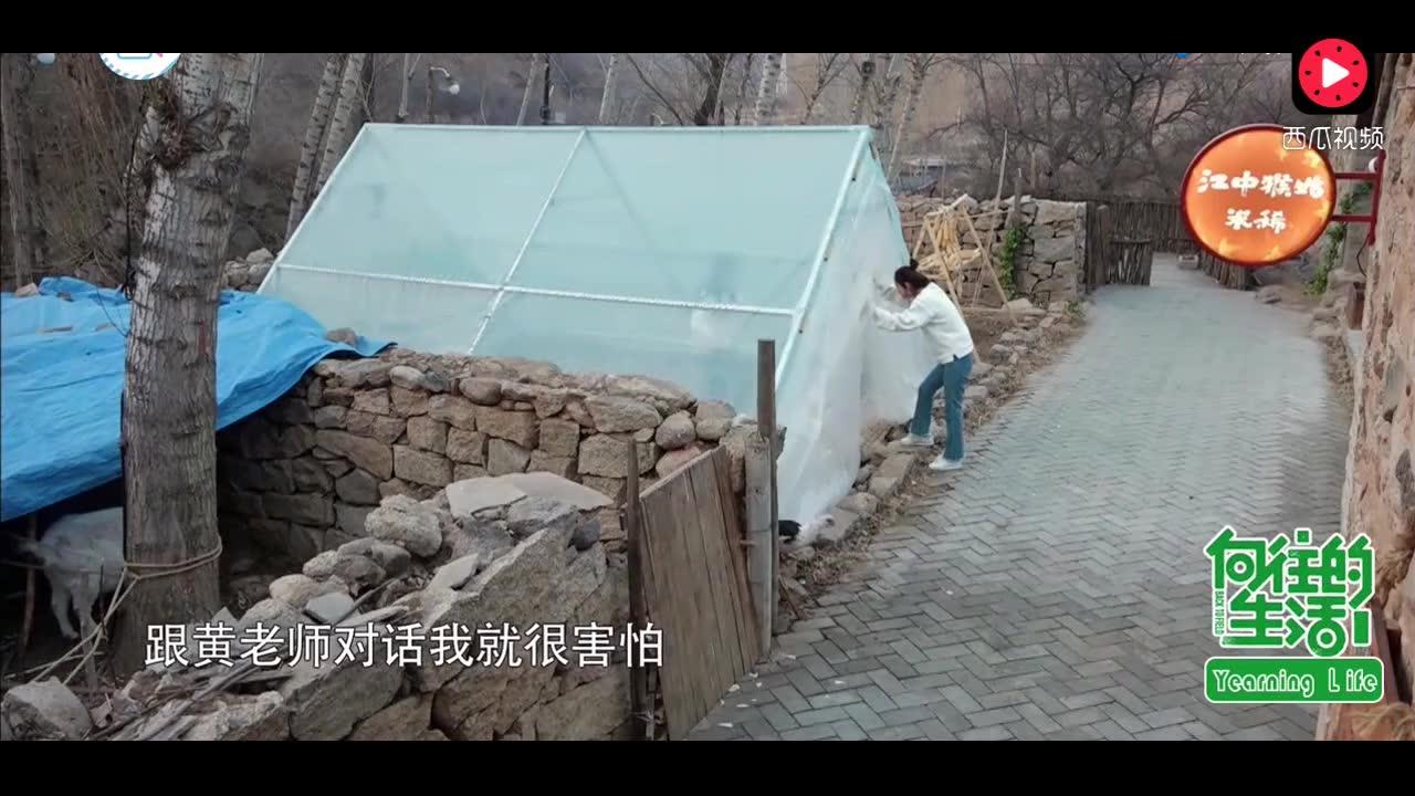 谢娜向赵丽颖诉苦: 与黄磊对话都害怕颤抖, 何炅变服务员太贴心