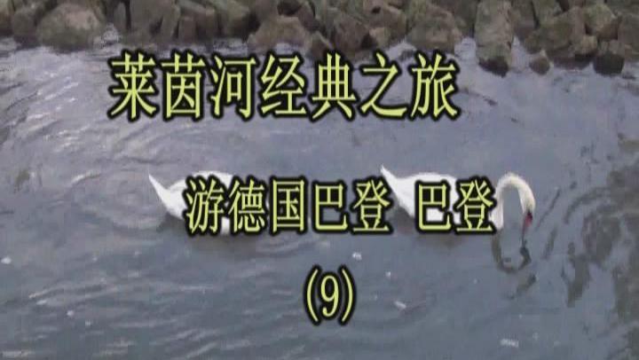 《莱茵河经典之旅》 杭州的高远征