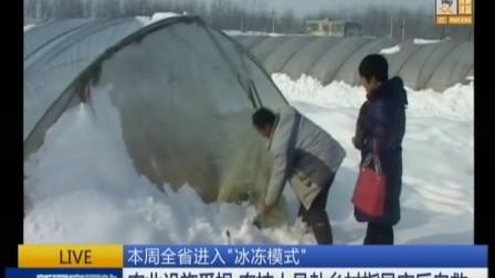 """本周全省进入""""冰冻模式"""": 农业设施受损 农技人员赴乡村指导灾后自救 新闻空间站"""