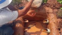在河边挖个坑埋上水管,天天有吃不完的黄鳝鲶鱼