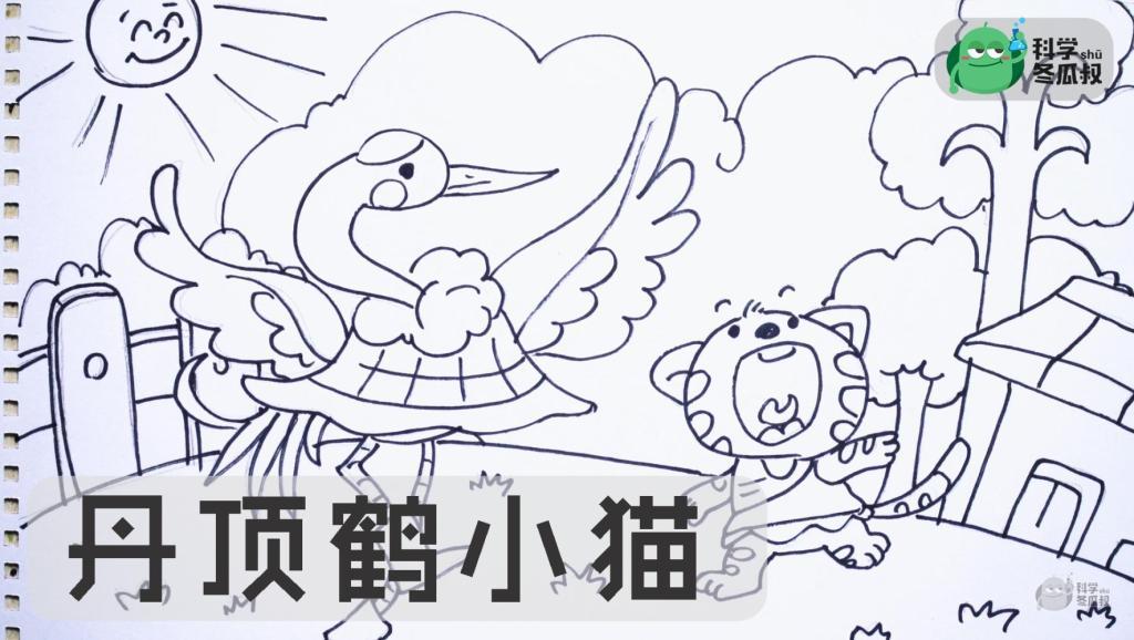 画 中外童话故事 丹顶鹤小猫,儿童绘画马克笔教程大全 打开 一笔画mal