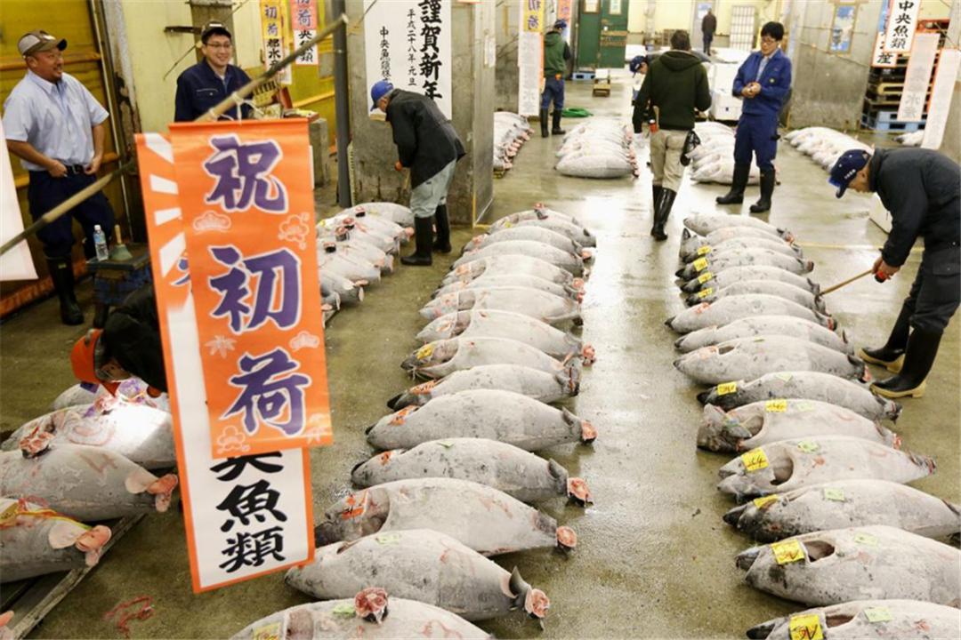 """世界60多国对日本""""下禁令""""! 日本向WTO""""告御状"""", 中方力挺判决结果!(图1)"""