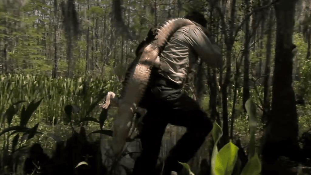 贝爷在沼泽地,打野遇到鳄鱼,单杀鳄鱼!