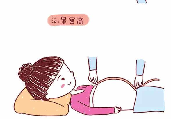 怀孕4个月, 怎么判断胎儿是否发育正常? 3个简单方法图片